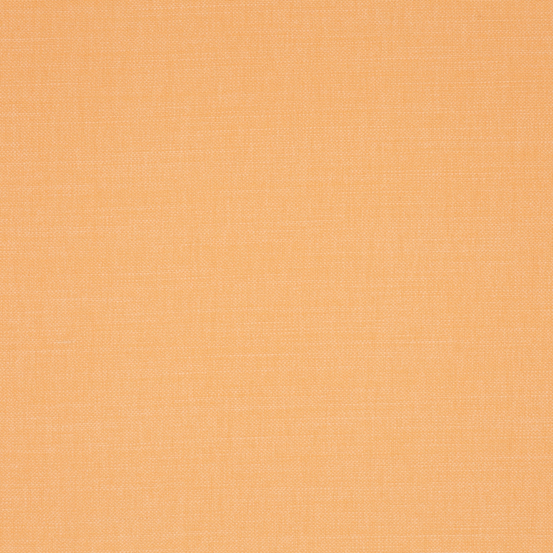 lys orange hot madison-0